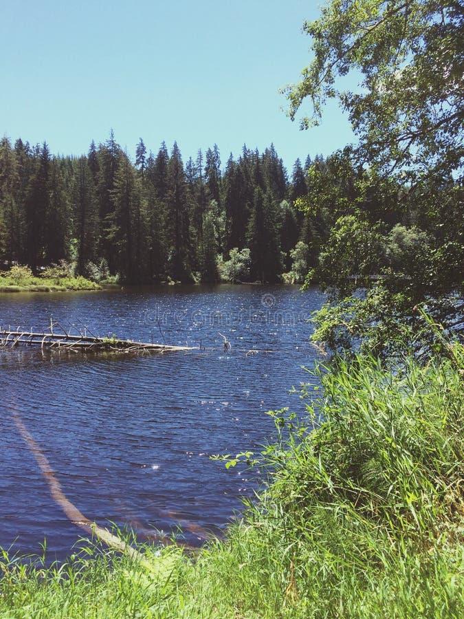Lago Sylvia Lake fotografía de archivo libre de regalías