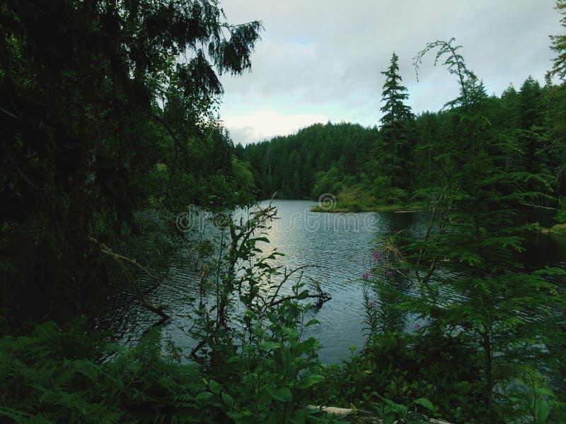 Lago Sylvia Lake fotos de archivo