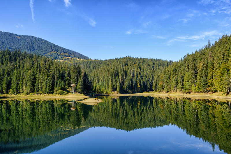 Lago Synevir fotografia stock libera da diritti