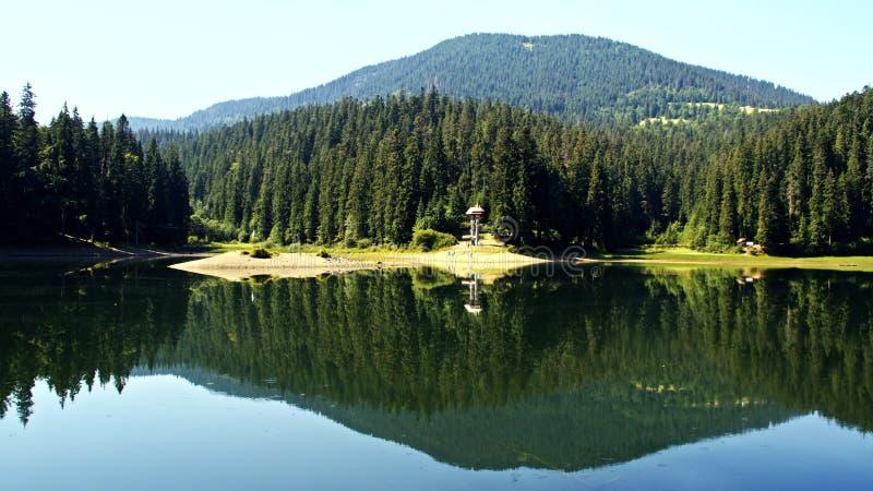 Lago Synevir in montagne carpatiche in Ucraina fotografia stock libera da diritti