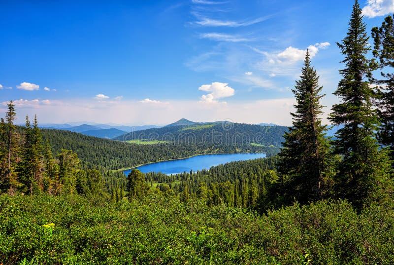 Lago in taiga conifero scuro Parco naturale Ergaki fotografie stock