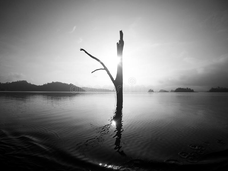 Lago Tailandia Khao Sok imagen de archivo libre de regalías