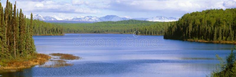 Lago Talkeetna immagine stock