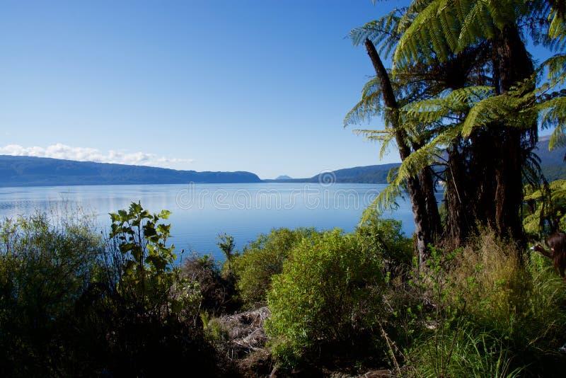 Lago Tarawera imagens de stock