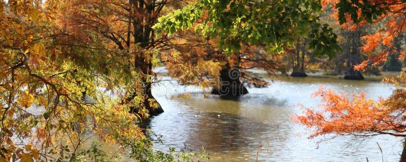 Lago tarchiato fotografie stock libere da diritti