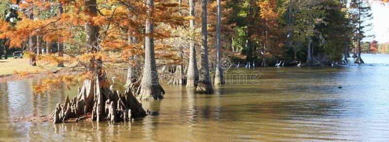 Lago tarchiato in autunno fotografia stock