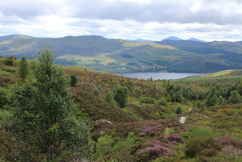 Lago Tay del rastro de Edramucky, Escocia foto de archivo