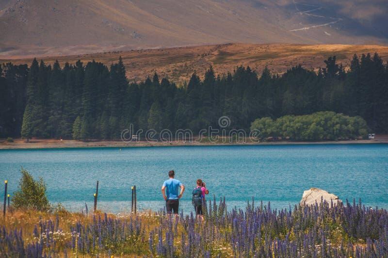 Lago Tekapo: Águas azuis com cenas calmas fotos de stock royalty free