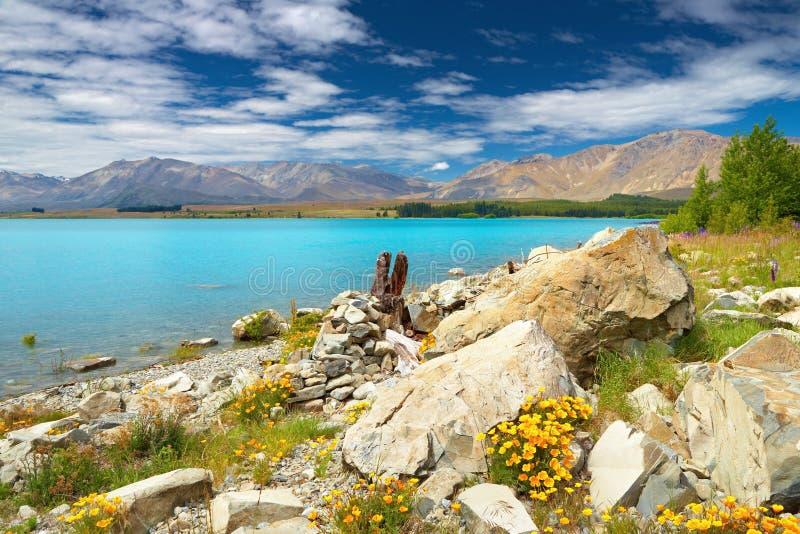 Lago Tekapo, Nova Zelândia imagem de stock royalty free