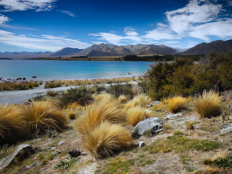 Lago Tekapo, Nova Zelândia foto de stock