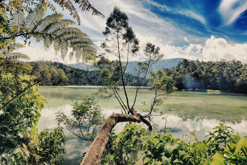 Lago Telaga Warna fotos de stock royalty free