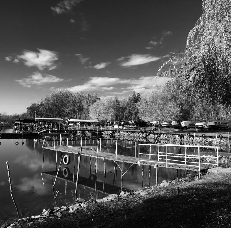 Lago Tisza noir fotografia de stock royalty free