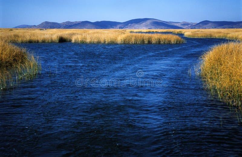 Lago Titicaca foto de archivo