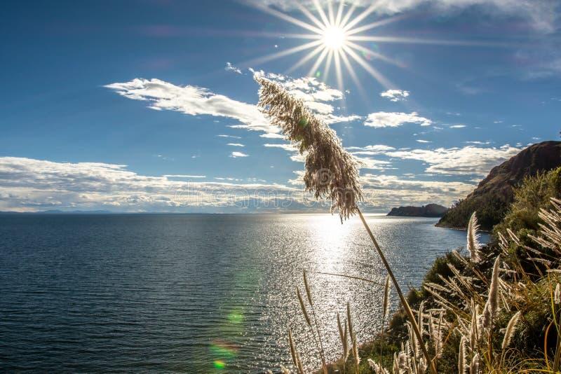 Lago Titicaca -2- imagens de stock