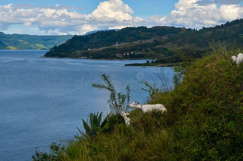 Lago Toba, Sumatra norte, Indonésia foto de stock royalty free