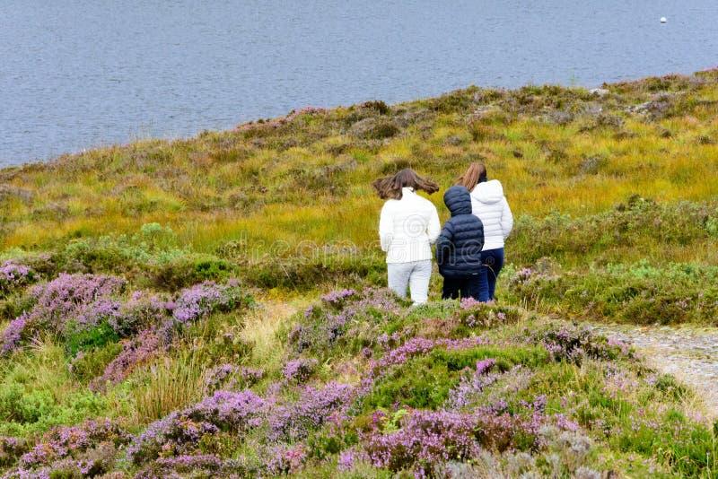 Lago Tollie in Wester Ross, Scozia immagine stock libera da diritti