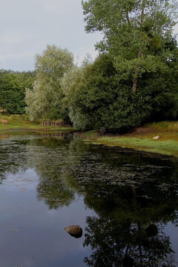 Lago tranquilo foto de archivo