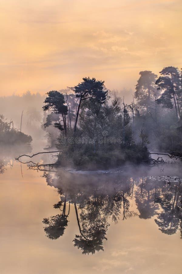 Lago tranquilo de alvorada, a sul dos Países Baixos fotografia de stock