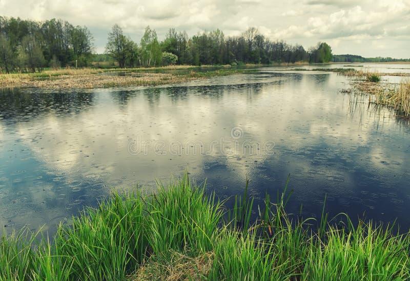 Lago tranquilo rodeado por el bosque de la primavera durante la lluvia Reflexión de las nubes de trueno en el agua foto de archivo libre de regalías