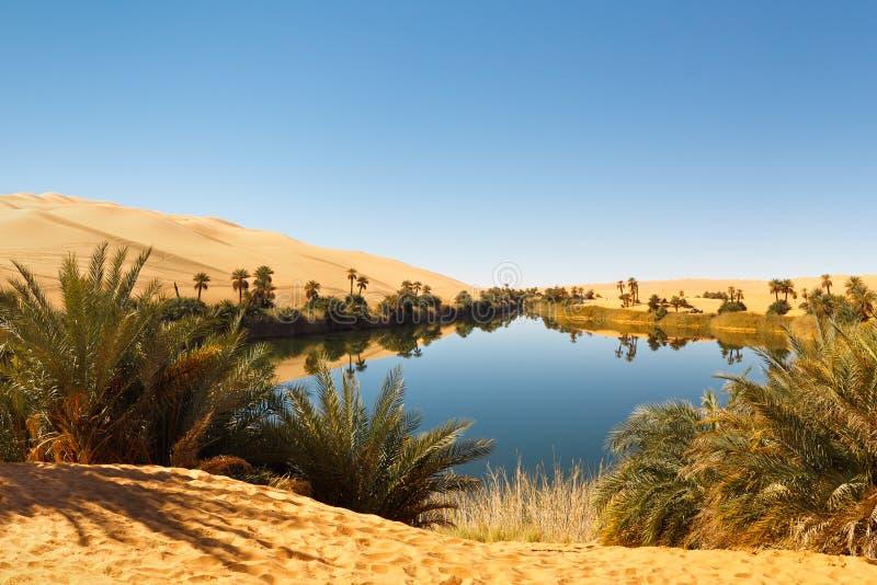 Lago Umm Alma - abbandoni l'oasi, Sahara, Libia immagine stock