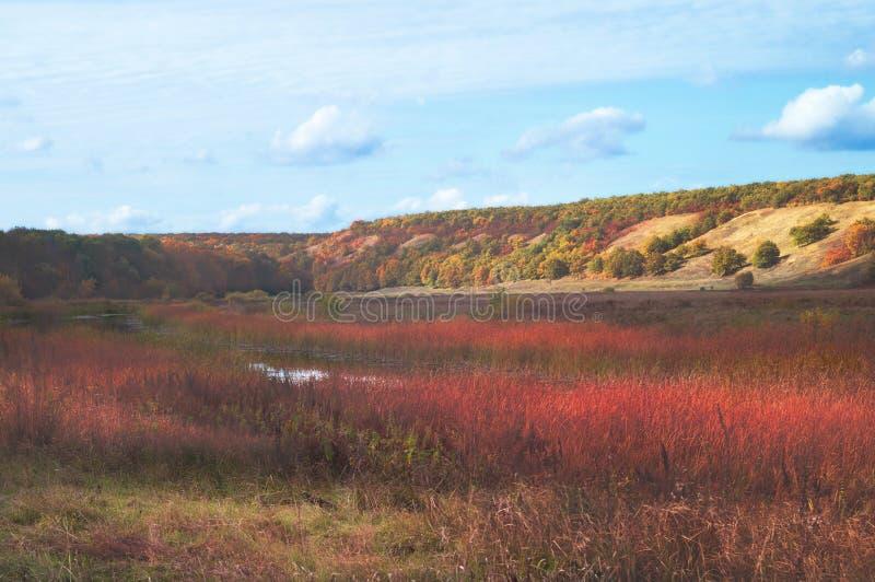 Lago in una valle collinosa di autunno pittoresco soleggiato, contro un fondo di chiaro cielo blu con le nuvole rade Paesaggio de immagini stock libere da diritti