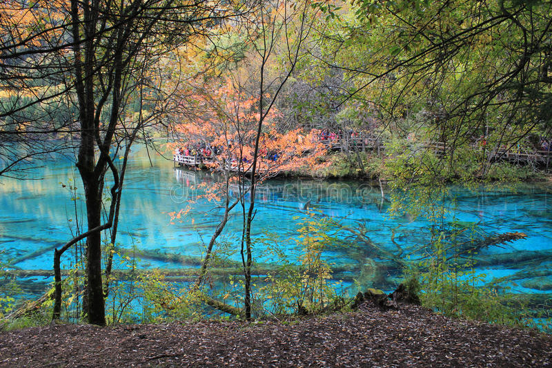 Lago variopinto in Jiuzhaigou fotografia stock