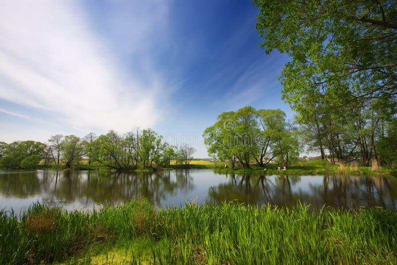 Lago, veraneantes fotos de archivo