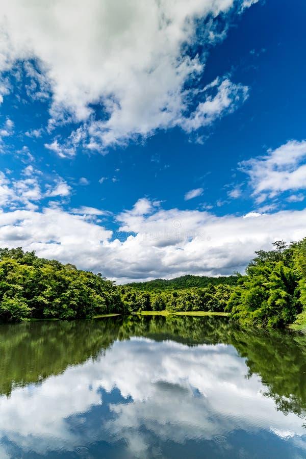 Lago verde com a floresta tropical verde e nuvem branca na SK azul fotografia de stock