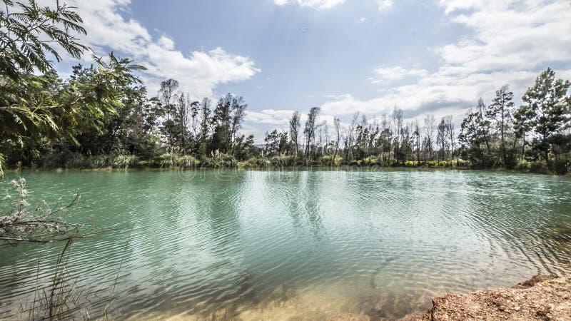 Lago verde com um céu azul e árvores verdes fotos de stock