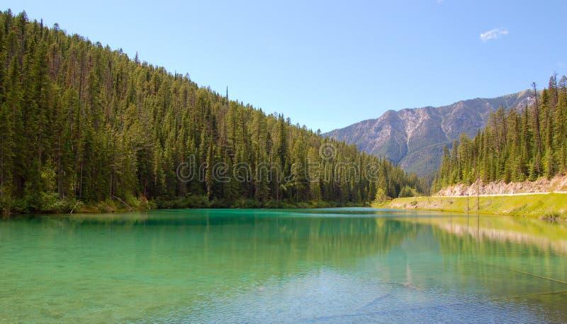 Lago verde oliva fotos de archivo
