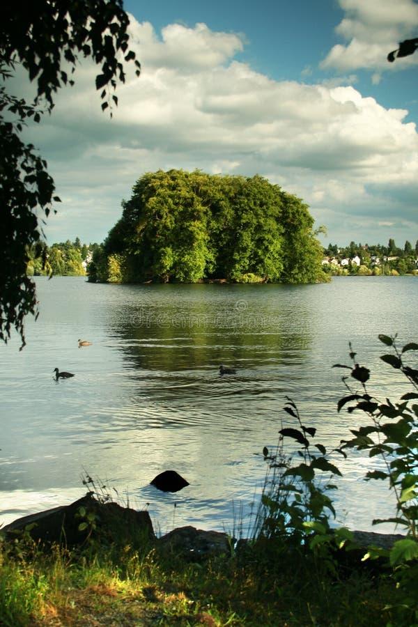 Lago verde, Seattle foto de stock royalty free