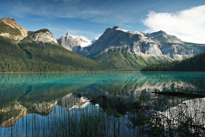 Lago verde smeraldo nella sosta nazionale di Yaho, Canada fotografie stock