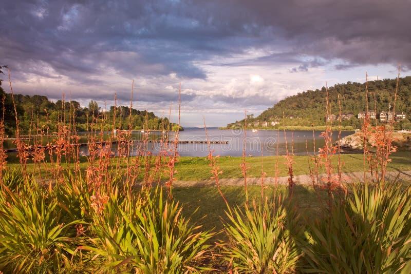 Lago Villarrica fotografia de stock