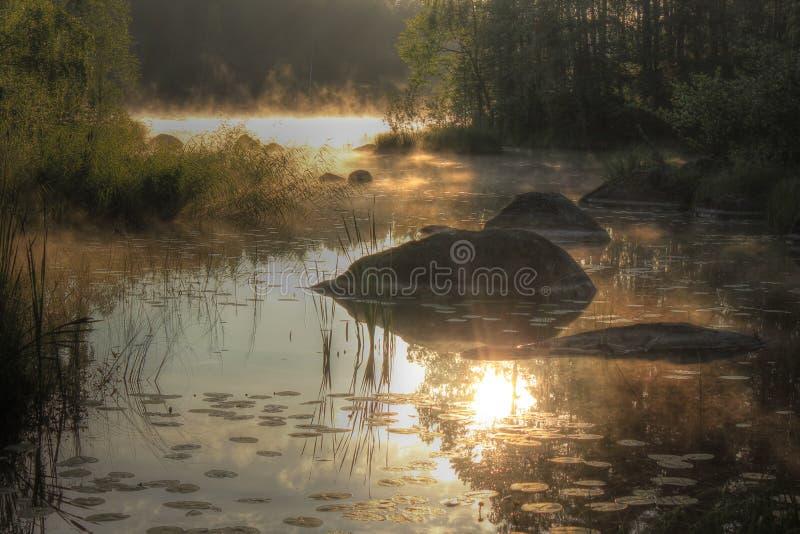 Lago Vuoksa all'alba, l'istmo careliano, Russia fotografia stock libera da diritti