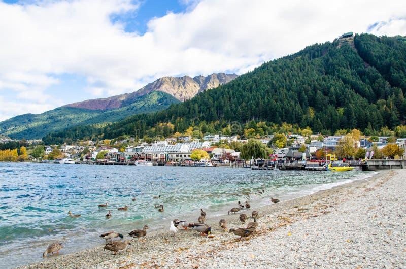 Lago Wakatipu que é ficado situado em Queenstown, Nova Zelândia imagem de stock royalty free