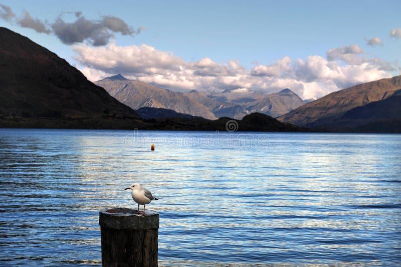 Lago Wanaka Nueva Zelandia imágenes de archivo libres de regalías