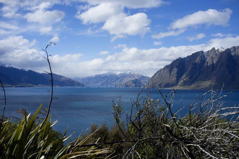 Lago Wanaka, Nuova Zelanda fotografia stock