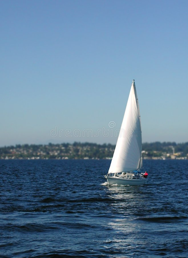 Lago Washington sailing immagini stock