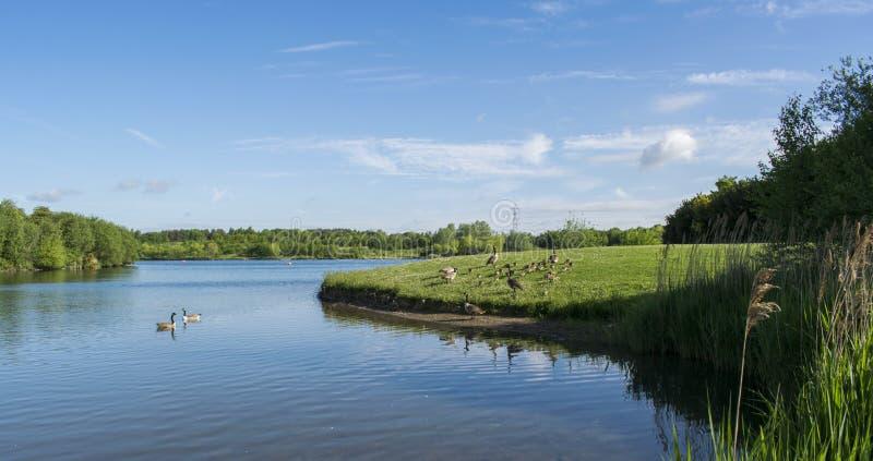 Lago Wath Manvers fotos de stock