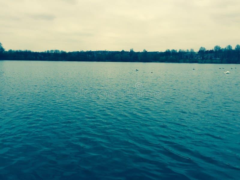 Lago Westport Alimentar-en-trent fotos de archivo