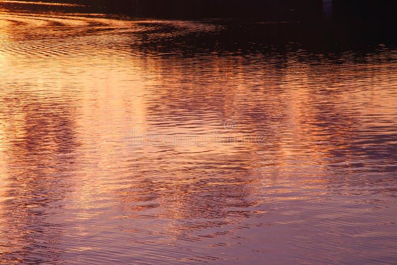 Lago whitefish di riflessione di tramonto, la TA immagini stock libere da diritti