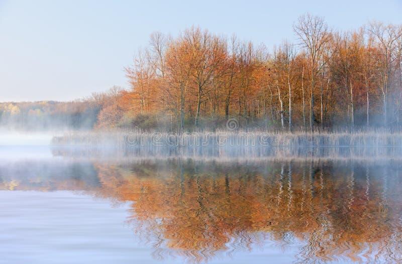 Lago Whitford in nebbia fotografia stock
