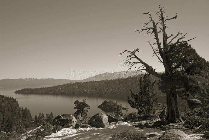 Lago wilderness de la sepia fotos de archivo