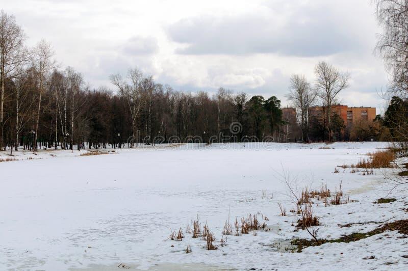 Lago winter imagenes de archivo