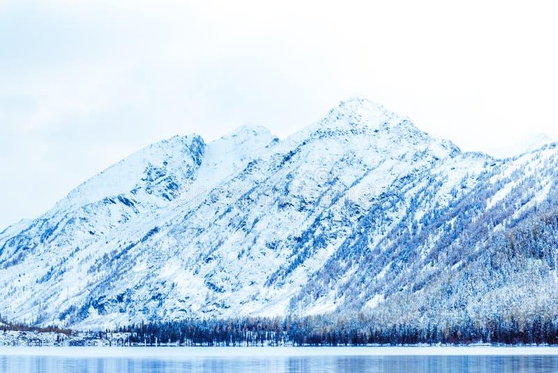 Lago winter con los pinos nevados en el banco de las montañas rocosas fotografía de archivo libre de regalías