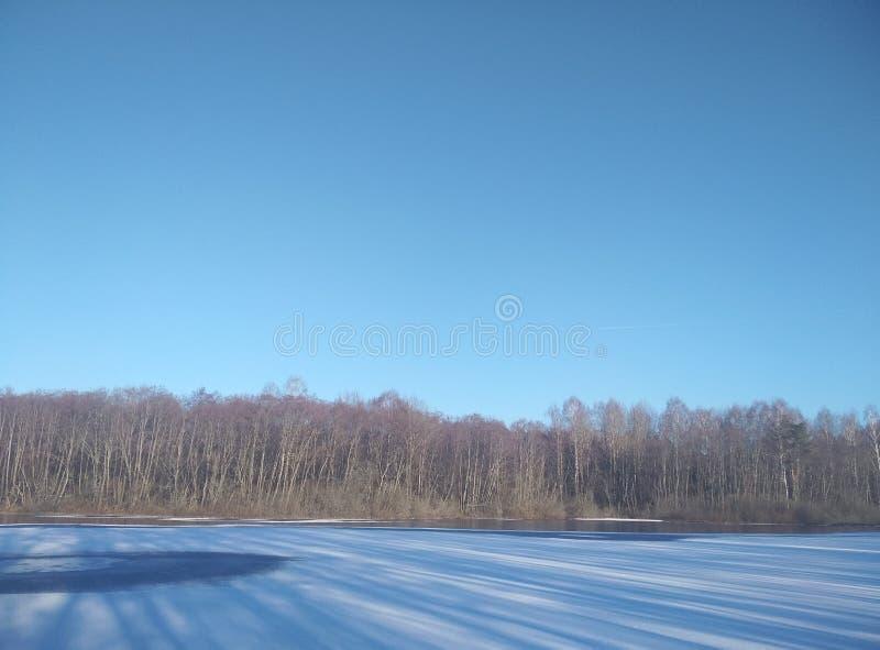 Lago winter na neve No céu gelado azul da floresta do horizonte Papel de parede do fundo imagens de stock