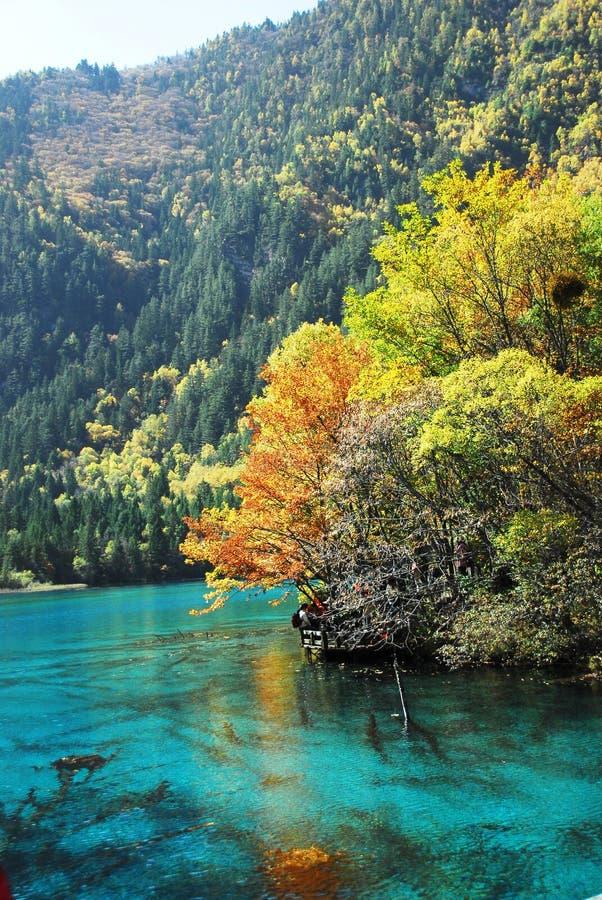 Lago Wu Hua no outono fotos de stock
