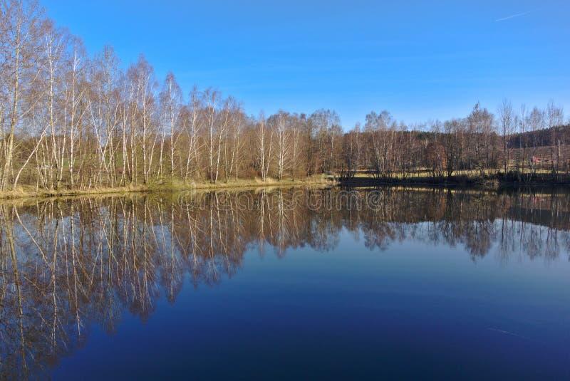 Lago y árboles de la reflexión del agua fotografía de archivo