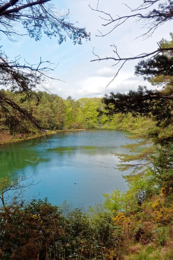Lago y arbolados escénicos en la piscina azul, Dorset, Inglaterra foto de archivo libre de regalías