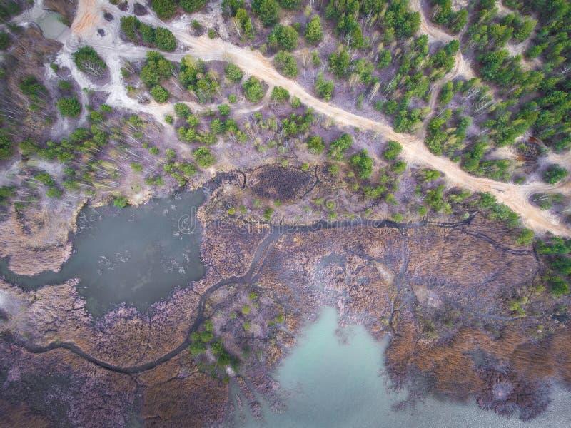 Lago y bosque durante tiempo de primavera Visión desde arriba Dabrowa Gorn imagen de archivo